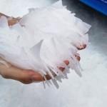 hielo-escama-150x150